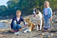 Zwei Kinder, zwei große Hunde Stockfoto
