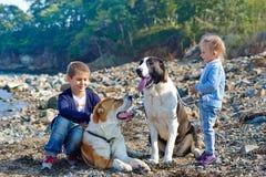 Zwei Kinder, zwei große Hunde auf der Küste Stockbilder