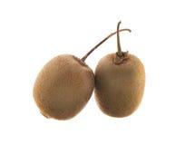 Zwei Kiwifrüchte Lizenzfreies Stockfoto