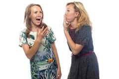 Zwei klatschende blonde Schwestern Stockbild