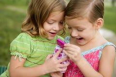 Zwei kleine Doppelschwestern, die mit rosafarbenem Kasten spielen stockfotografie