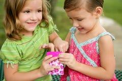 Zwei kleine Doppelschwestern, die mit rosafarbenem Kasten spielen lizenzfreie stockbilder