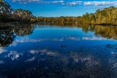 Zwei kleine Enten auf einem großen Teich. Lizenzfreies Stockbild