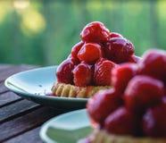 Zwei kleine Erdbeertörtchen auf grünen Platten - Nahaufnahme stockfoto