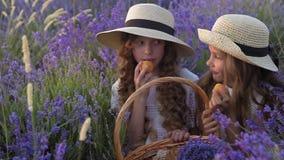Zwei kleine Freundinnen, die Aprikosen auf einem Picknick auf einem Lavendelgebiet essen stock footage