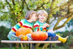Zwei kleine Geschwisterjungen, die Steckfassung-Olaterne für Halloween in a herstellen Stockbild