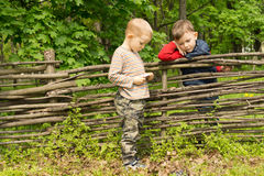 Zwei kleine Jungen, die eine Diskussion über einem Zaun haben Lizenzfreie Stockfotos