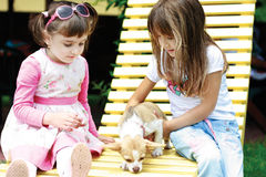 Zwei kleine Mädchen, die mit einem Hund spielen lizenzfreies stockfoto