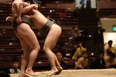 Zwei kleine Sumoringkämpfer im unbeholfenen Griff stockfotografie