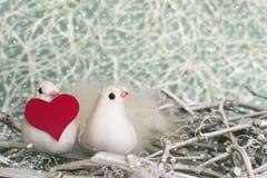 Zwei kleine weiße Vögel im Nest mit rotem Herzen zur Winterzeit Lizenzfreie Stockfotos
