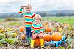 Zwei Kleinkindjungen, die auf großen Kürbisen auf Flecken sitzen Lizenzfreies Stockfoto