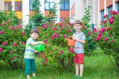 Zwei Kleinkindjungen, die Rosen mit Dose im Garten wässern Familie, Garten, arbeitend, Lebensstil im Garten Lizenzfreie Stockbilder