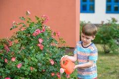 Zwei Kleinkindjungen, die Rosen mit Dose im Garten wässern Familie, Garten, arbeitend, Lebensstil im Garten Stockbild