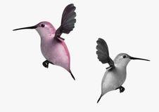 Zwei Kolibris Lizenzfreies Stockfoto