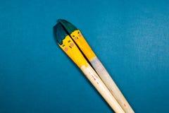 Zwei Lächelnbürstenküsse über Palette mit Herdsymbol Stockfotografie