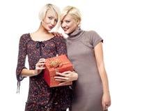 Zwei lächelnde blonde Schönheiten Stockfotografie