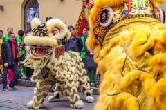 Zwei Löwen lizenzfreies stockbild