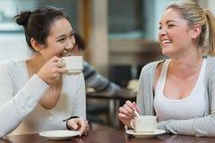 Zwei lachende Studenten in der Collegekaffeestube Lizenzfreies Stockbild