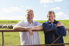 Zwei Landarbeiter mit Menge der Schafe lizenzfreie stockfotos