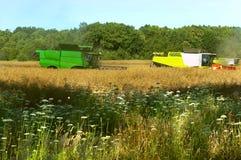Zwei landwirtschaftliche Maschinen funktionieren auf dem Gebiet, Erntemaschinen des Kornes funktionieren auf dem Gebiet, Ackerlan Lizenzfreies Stockbild
