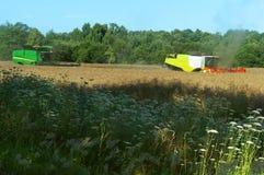 Zwei landwirtschaftliche Maschinen funktionieren auf dem Gebiet, Erntemaschinen des Kornes funktionieren auf dem Gebiet, Ackerlan Lizenzfreie Stockbilder