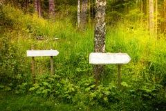 Zwei leer unterzeichnet herein den Wald Lizenzfreies Stockbild
