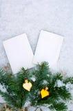 Zwei leere Fotografien einer Niederlassung eines Tannenbaums und der Spielwaren des neuen Jahres auf Schnee Stockfotografie