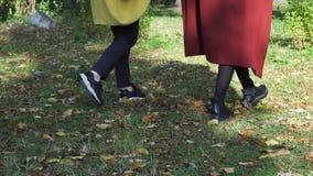 Zwei lesbisch, Händchenhalten der jungen Mädchen und Gehen in Grün, Herbstpark, LGBT-Konzept Gleichgeschlechtliche, schöne Lesbe lizenzfreies stockbild