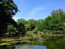 Zwei Leute, die durch die Toronto-Inseln canoeing sind Lizenzfreies Stockbild