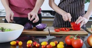 Zwei Leute schnitten purpurroten Kohl und Gemüsepaprika stock footage
