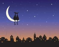 Zwei liebevolle Katzen auf einem Mond Stockfotos