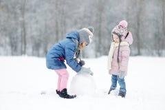 Zwei lustige entzückende kleine Schwestern im Winterpark Stockbild