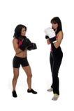 Zwei Mädchen-Boxen Lizenzfreies Stockfoto