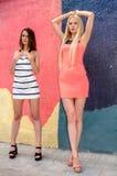 Zwei Mädchen Brunette und blonde Frau mit dem langen Haar, das gegen Graffitihintergrund aufwirft Stockbilder