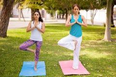 Zwei Mädchen, die an einem Park meditieren Lizenzfreie Stockbilder