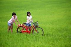 Zwei Mädchen, die Spaß auf rotem Fahrrad auf dem Paddygebiet haben Lizenzfreie Stockfotografie