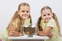 Zwei Mädchen sitzen an einem runden Aquarium mit Goldfisch und schauen im Rahmen Lizenzfreie Stockbilder