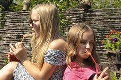 Zwei Mädchen trinken Saft von einem Stroh auf dem Gras Stockbilder