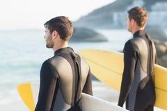 Zwei Männer in den Wetsuits mit einem Surfbrett an einem sonnigen Tag Lizenzfreies Stockfoto