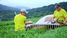 Zwei Männer erfassen Tee an einer Teeplantage mit einem automatischen Scherer für den Schnitt, Ausschnitt und zusammenbauenden Te stock video