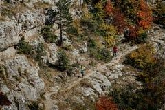 Zwei Männer skyrunner mit den Wanderstöcken, die auf eine Spur Herbstwald durchlaufen stockfotografie