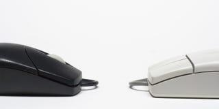Zwei Mäuse Stockfoto