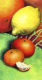 Zwei Mandarine, Zitrone und Pampelmuse Stockbilder