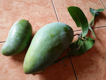 Zwei Mangofrüchte Stockfoto