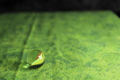 Zwei Marmore auf grünem Hintergrund Lizenzfreie Stockfotografie
