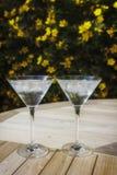 Zwei Martini-Gläser im Sonnenschein Stockfotografie