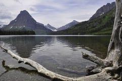 Zwei Medicine See gestaltet durch Treibholz stockfoto