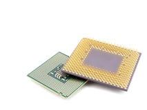 Zwei Mikroprozessoren Lizenzfreie Stockfotografie