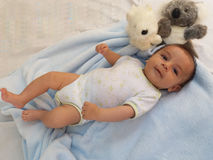 Zwei Monate Baby mit Koalaspielzeug Lizenzfreies Stockfoto