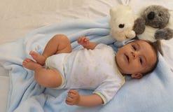 Zwei Monate Baby mit Koalaspielzeug Stockfotos